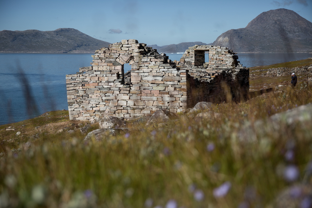 Hvalsey church ruin with flowers in the foreground in South Greenland.jpg