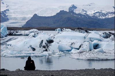 Glacier Lagoon and Arctic Terns